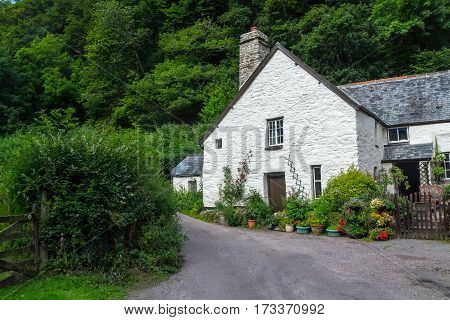 White house in the forest in North Devon. UK