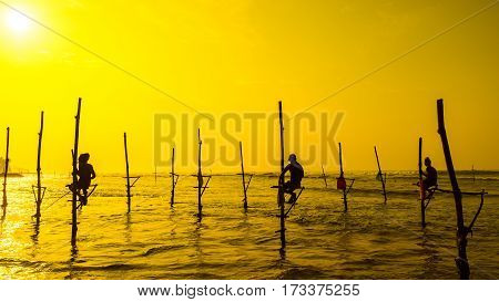 Sri Lanka's Traditional Fisherman On Sanset. Fishing On Silt Is Very Common In Many Asian Countries