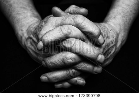 Old hands of senior clasped together. Black and white photography