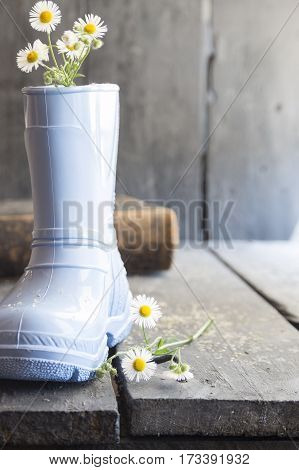 Daisy and boots on a vintage background