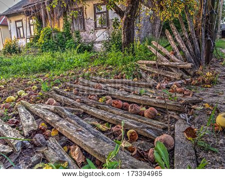 Wolka Zamkowa Poland - August 14 2016: Destroyed wooden fence next to an abandoned farmhouse