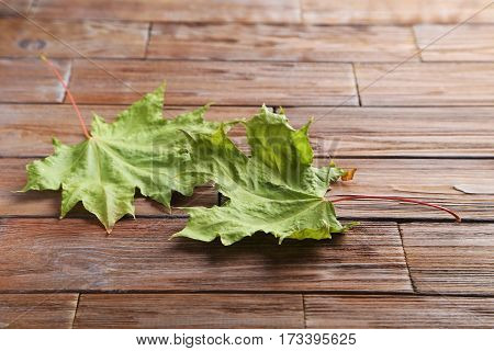 Autumn leaf on a brown wooden table