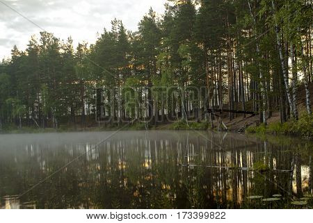 Fog on the surface of the forest lake, forest reflected in water