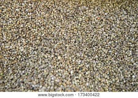 (Cannabis), pictures of flaxseed in the sales department