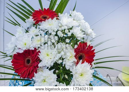 Bunch Of Fresh Red Gerbera Chamomile And White Chrysanthemum Flower