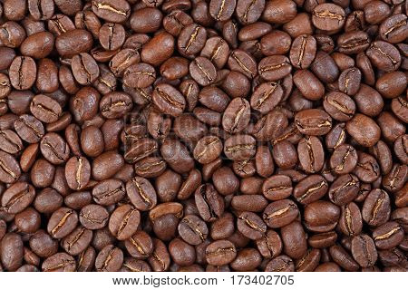 Texture of Colombia Supremo (gourmet coffee). Macro photo of texture.