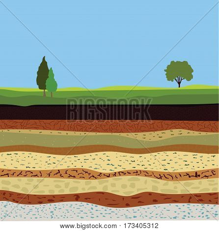 soil formation and soil horizons underground layers of earth landscape with sky and trees the geological structure of the earth