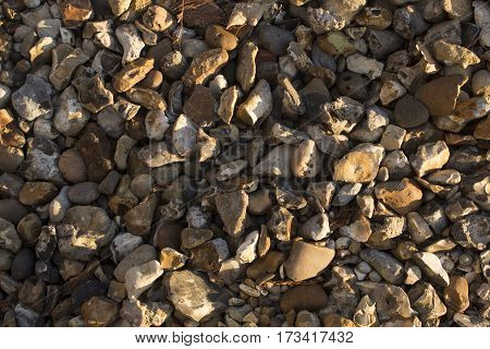 Different sizes and colours pebbles on seashore at dawn