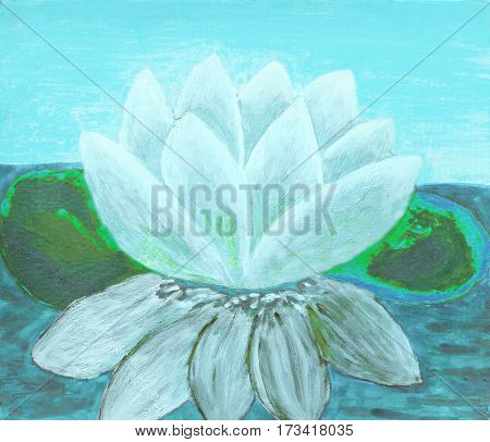 One White colour waterlily, illustration, oil painting.