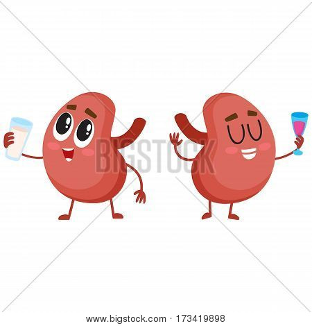 Pair of cute and funny healthy human kidney characters drinking milk and wine, cartoon vector illustration isolated on white background. Couple of healthy human kidney characters with drinks