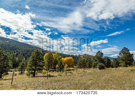 The Enchanted Circle Scenic Byway is an 84 mile New Mexico Scenic Byway and National Forest Scenic Byway around Wheeler Mountain located in Northern New Mexico. It begins and ends in Taos New Mexico.