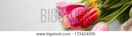 Bouquet of spring tulips closeup on a light blue background, border design panoramic banner