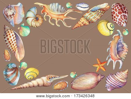 Square frame with hand painted underwater life objects. Marine design. Hand drawn watercolor painting on  brown background.