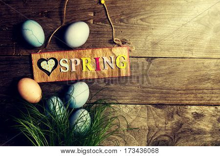 Easter Eggs on Fresh Green Grass on Wooden Background with Sunny Light Beams. Horizontal with Copy Space. Easter or Spring Concept.