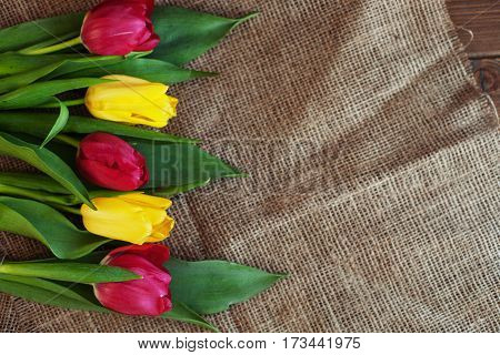 Spring flowers on sacking. Background. Concept of holiday birthday Easter March 8.