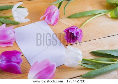 Bouquet Of Tender Pink Tulips With Sheet Of Paper On Light Wooden Background
