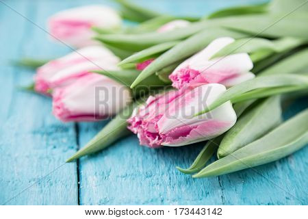 Bouquet Of Tulips On Turquoise Rustic Wooden Background. Spring Flowers. Greeting Card For Valentine