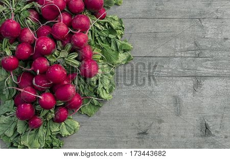 Radishes at the market