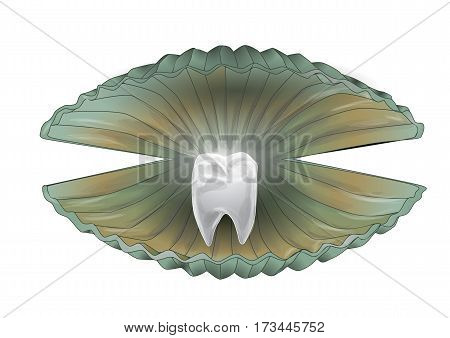 shell with a tooth isolated on black background