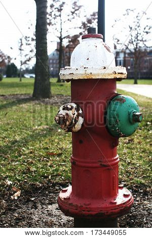 Rustic Fire Hydrant at University of Illinois