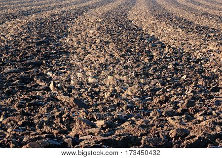 ploughed brown field detail during winter time