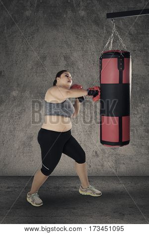 Strong obese woman doing workout by punching a boxing sack with boxing gloves