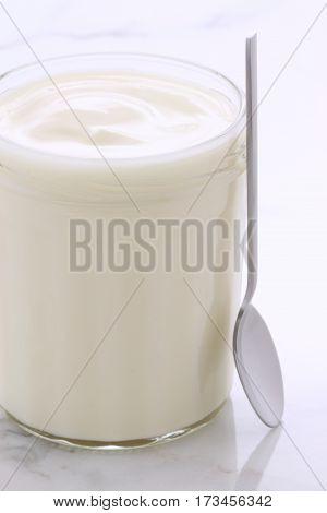 Vintage Retro Styling Yogurt