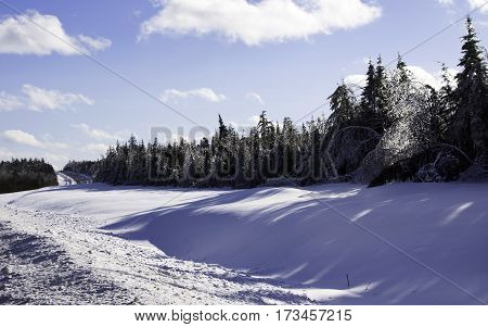 Winter snow scene, with the sun on a row fir trees along the side of the highway to Miramichi, New Brunswick, covered in thick glittering ice and snow from a recent ice storm  and the highway continuing on in the distance. Shot on a chilly bright, blue sk