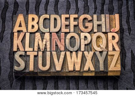alphabet in vintage letterpress wood type printing blocks against black lokta paper
