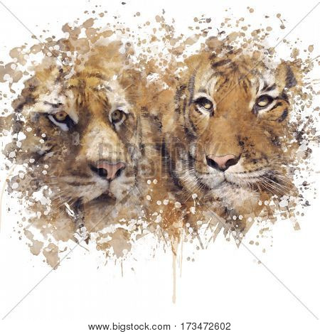 Digital Painting of Two Tigers Heads