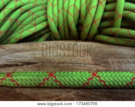 green rope on tree stumb with focus on foreground