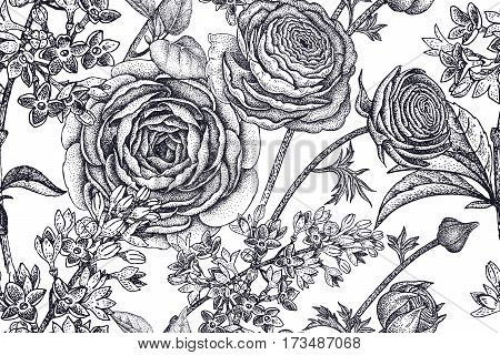 Spring flowers seamless floral pattern. Hand drawing garden plants buttercup lilac black on white background. Vector vintage illustration. For wrapping fabric fashion paper packaging textile.