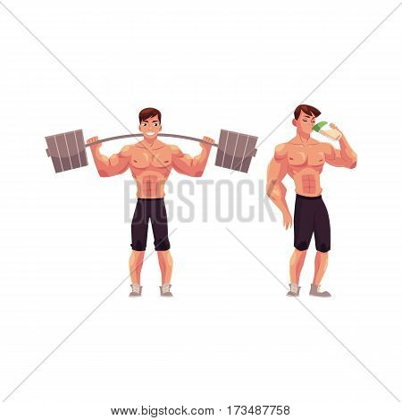 Man bodybuilder working out with barbell and drinking protein shake after training, cartoon vector illustration isolated on white background. Male bodybuilder with barbell and drinking protein