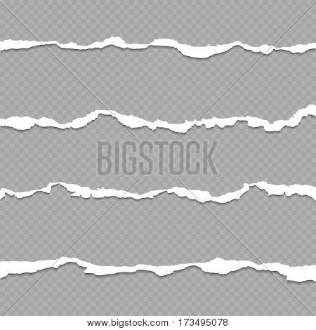 Ripped paper, torn paper sheet edges isolated on transparent background vector illustration. Shred of paper for divider, strip of paper on checkered backdrop