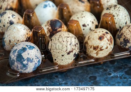 Quail Eggs In Container