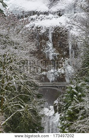 Attractive show of gray bridge situating opposite snowy cliff near pine and bare deciduous trees in United States