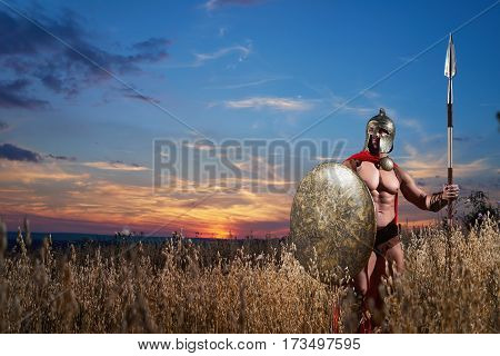 Born to protect. Horizontal portrait of a fearless Roman legionary fighter in a battledress with stunning hot sexy muscular body posing alone in the field on dusk beautiful scenery on the background