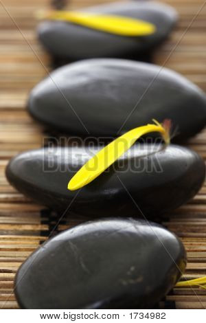 Spa Stones With Flower Petals