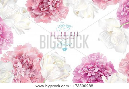 Vector botanical horizontal banner with pink peony and white tulips on white background. Romantic design for natural cosmetics, perfume. Can be used as greeting card or wedding invitation