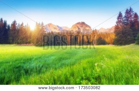 Scenic surroundings of the national park Durmitor. Picturesque and gorgeous morning scene. Popular tourist attraction. Location place Montenegro, balkan peninsula, Europe. Discover the world of beauty