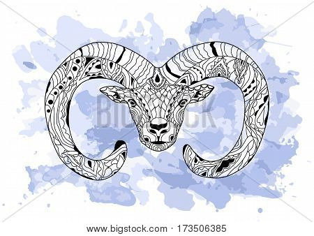f6c64c644 Line art hand drawing black ram on white background with blue watercolor  blots.Doodle style
