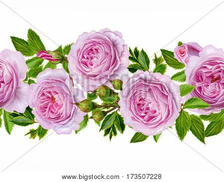 Horizontal floral border. Pattern seamless. Flower garland of roses camellia and delicate beautiful flowers green leaves. Isolated on white background.