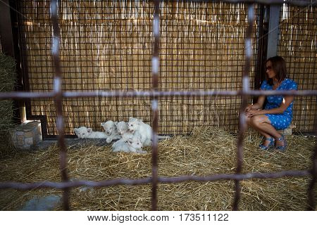 Woman next to the white lion cubs in a zoo cage who were born in captivity June 23 2016.