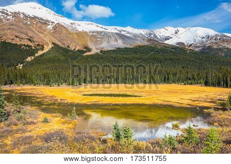 Waterlogged valley in the snowy Rocky Mountains. Sunny day. The concept of active tourism and ecotourism