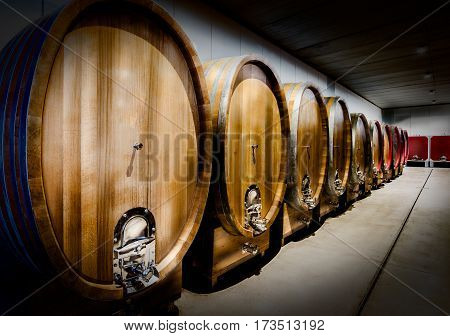 Oak barrels of red wine used to age in northern italy