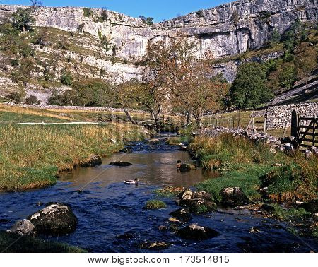 View of Malham Cove and beck in the Yorkshire Dales Malham Yorkshire Dales North Yorkshire England UK Great Britain Western Europe.