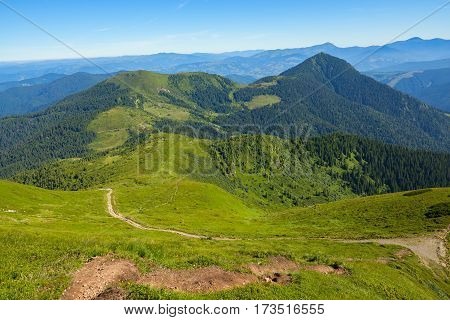 Hiking Trail Leads Along The Green Alpine Meadows