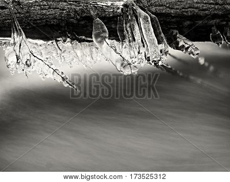 Icy Branches Above  Chilling Stream. Reflections In Icicles