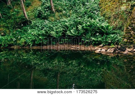 Picturesque riverside with reflection on water surface