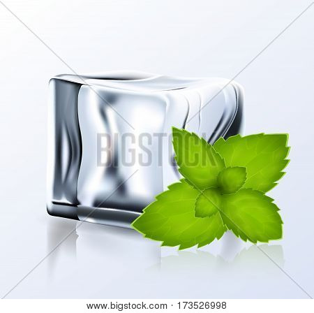 Bright Ice Block With Peppermint.eps